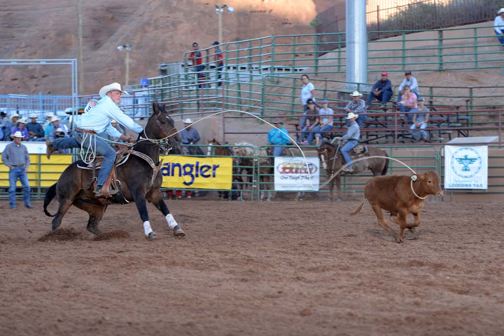 Tie-Down Roping Action
