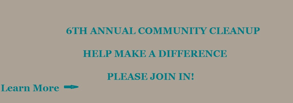 Community Cleanup 2016