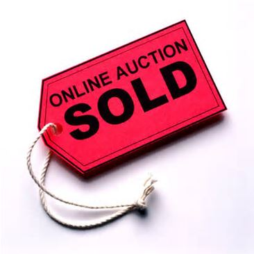 Online Auctions for Surplus Property